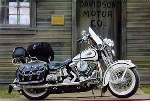 Druck 1999 Harley Davidson Flsts