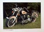 Harley Davidson Heritage Softail Bike