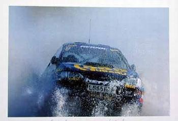 Rally 1995 Carlos Sainz Luis