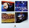 Porsche Original 2004 Erschienen Zum