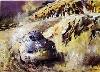 Porsche-originaldruck 1988 Porsche 550 Coupé - Poster