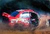 Rally 1999/98 Foto Mcklein Burns/reid