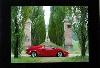 Original Lamborghini 1991 Anniversario