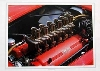 Ferrari Testa Rossa 250 Tr
